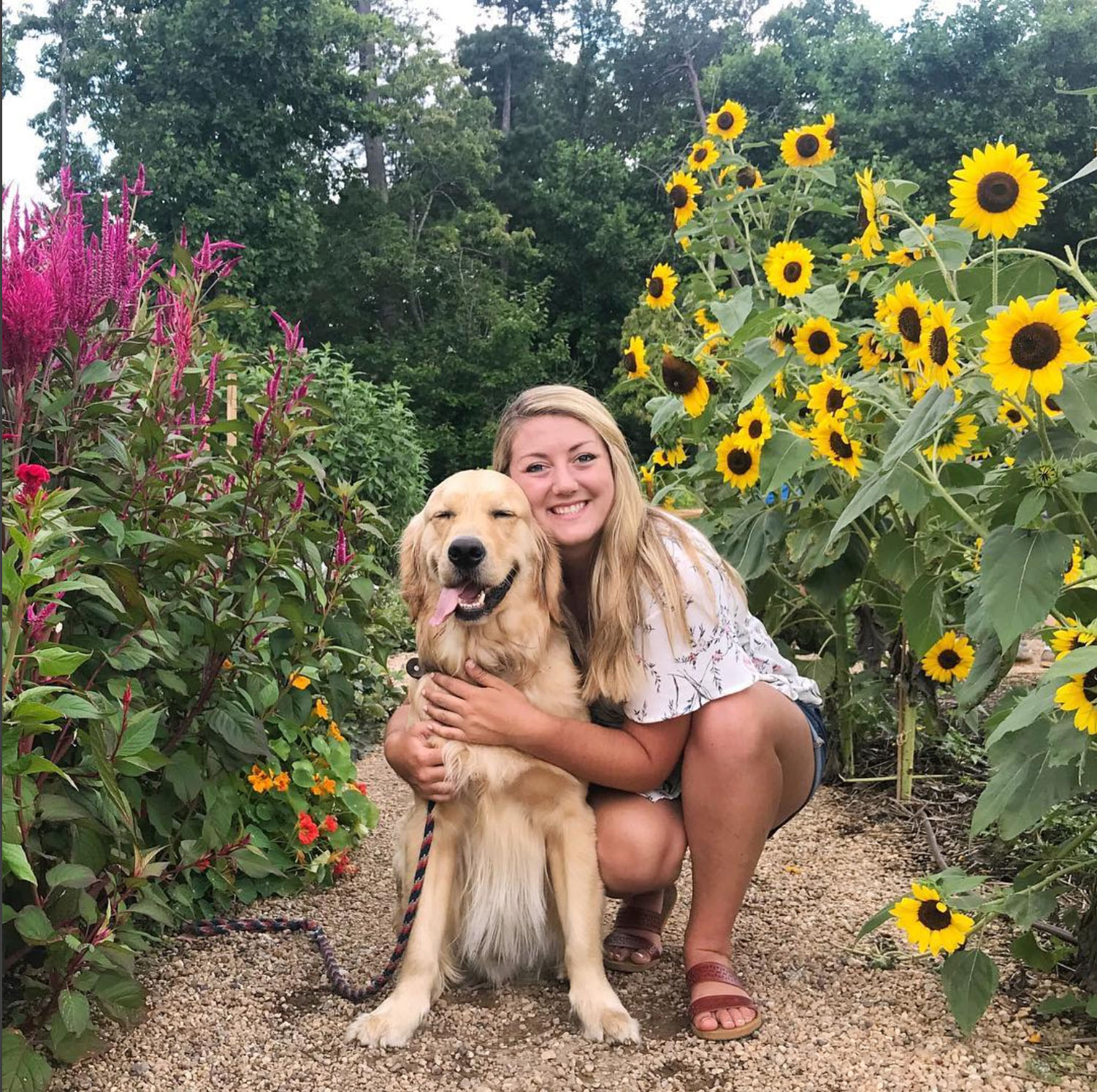My Pup Oakley: The True TAIL Of A Golden Retriever That Became A Social Media Sensation
